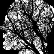 Manifiesto ético del uso de datos y algoritmos
